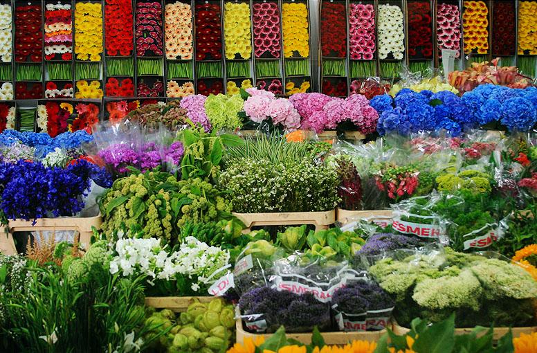 Оптовые поставщики цветов в алматы, купить цветы